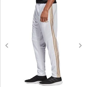 Brand New Adidas Men's Metallic Tiro 19 Tr. Pants